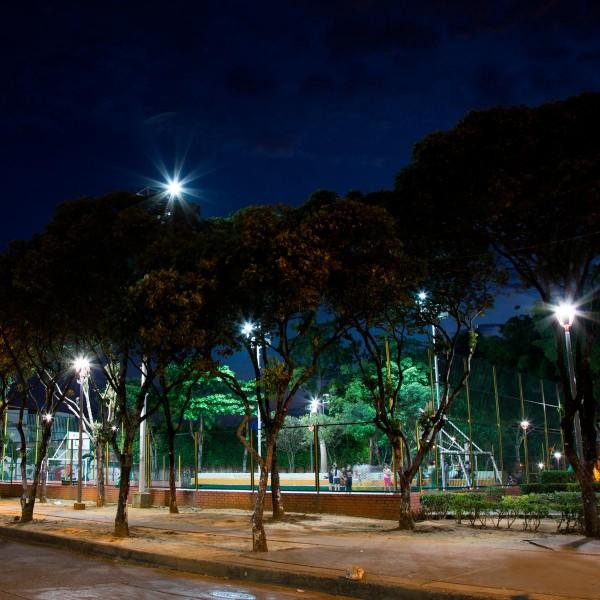 Parque la Ceiba Bucaramanga   Santander